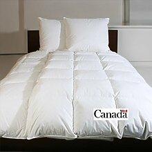 Schäfer extra-warme Winter-Daunendecke 135x200 cm gefüllt mit 1300g 100% canadische Daunen, 8cm hohe Innenstege, 3x4 Kassetten, Wärmeklasse 4