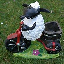 Schaf Molly auf Fahrrad,zum Bepflanzen, Tierfigur