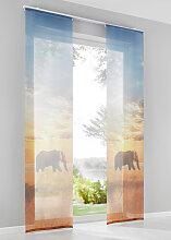 Schiebegardine Elefant (1er-Pack), beige (H/B: