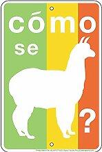 Schilder 4Fun Como Se Lama, Kleiner Parken Schild