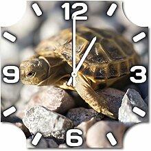 Schildkröte, Design Wanduhr aus Alu Dibond zum Aufhängen, 30 cm Durchmesser, schmale Zeiger, schöne und moderne Wand Dekoration, mit qualitativem Quartz Uhrwerk