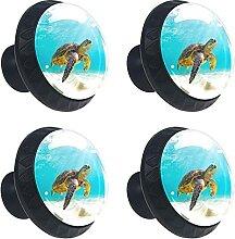 Schildkröte Kristallglas Kommode Schublade