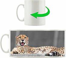 schlafender schöner Gepard schwarz/weiß braun,