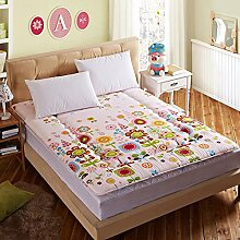 Schlafzimmer komfortabel atmungsaktiv TATAMI Matratze/Dicken warmen faltbare Matratze-E 100x200cm(39x79inch)