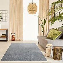 Schlingen Teppich Everest - Farbe: Beige Grau Caramel Anthrazit oder Rot | hochwertige und strapazierfähige Qualität | Fußbodenheizung geeignet | für Wohnzimmer Schlafzimmer Kinderzimmer und Büro, Farbe:Grau, Größe:160 x 220 cm