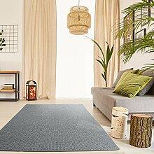 Schlingen Teppich Snake - Farbe wählbar | Geprüfte Qualität: schadstoffgeprüft robust pflegeleicht und antistatisch | für Wohnzimmer Schlafzimmer Flure und auch für Fußbodenheizung geeignet, Farbe:Grau, Größe:350 x 400 cm
