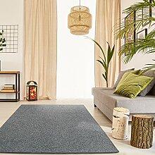 Schlingen Teppich Snake - Farbe wählbar | Geprüfte Qualität: schadstoffgeprüft robust pflegeleicht und antistatisch | für Wohnzimmer Schlafzimmer Flure und auch für Fußbodenheizung geeignet, Farbe:Anthrazit, Größe:100 x 150 cm