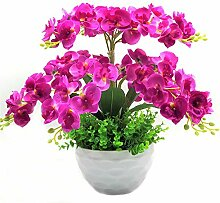 Schmetterling orchidee dekorative blumen & kranz