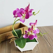 Schmetterling Orchidee getopft Bonsai Künstlicher