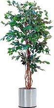 Schneider Kunstpflanze Ficus Benjamini B/H: 8 cm x