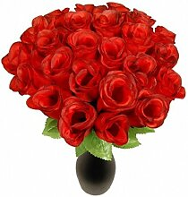 Schramm® 72 Stück Hecken 26cm Rosen rot