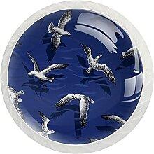 Schrankknäufe, Möwen-Design, rund, Kristallglas,