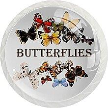 Schrankknäufe, schöne Betterflies, rund,