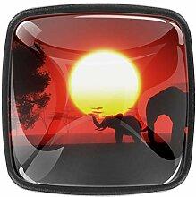 Schrankknöpfe aus Glas, 3 cm, transparent, für