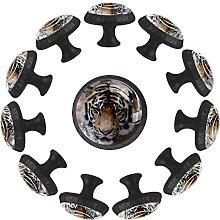 Schubladenknäufe, asiatischer Tiger, Glas,