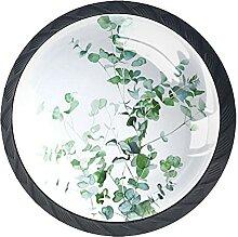 Schubladenknäufe, botanische Illustration, Glas,