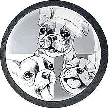 Schubladenknäufe, grau, weiß, lustig, Bulldogge,
