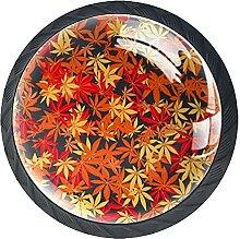 Schubladenknauf, 35 mm, Glas, Ahorn, nahtloser