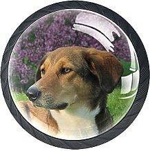 Schubladenknauf, 35 mm, Glas, mit Hundekopf, rund,