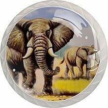 Schubladenknauf, Elefantenlandschaft, rund, Glas,