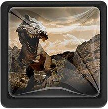 Schubladenknopf Zuggriff Quadratische Dinosaurier