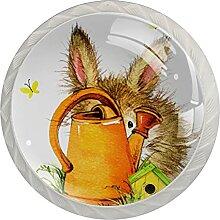 Schüchternes Kaninchen Küchenknopf
