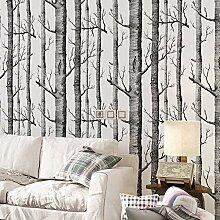 Schwarz Weiß Birkenbaum Tapete Für Schlafzimmer