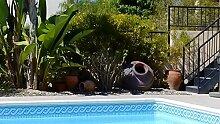 Schwimmbecken-Bordüre (1-Meter-Packungen)