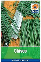 ScoutSeed 2 PACKS of CHIVES Garten-Krautensamen
