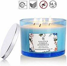 Seasons Shop Citronella Candle Natural Soy Wax