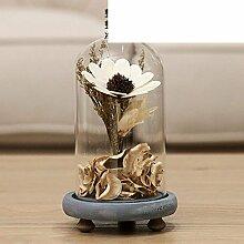 SED Dekorationen-American villagedried Blume Glas