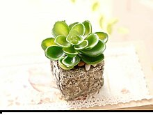 SED Dekorationen-Pastorale künstliche Blume Kit