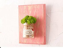 SED Dekorations-Kreativer Blumentopf Wandbehang
