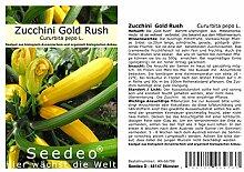 Seedeo Zucchini Gold Rush (Cururbita pepo L.) 20 samen BIO