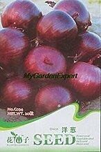 seedsown Heiße verkaufen20pcs Zwiebelsamen,