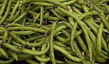 seedsown Keimfutter: 20 Samen Nt Bohnen