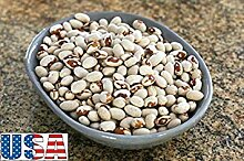 seedsown Samen Keimung: 50 Samen: Usa Rare Yellow