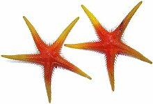 Seesterne orange gelb, 2 St. - Kunststoff Seesterne zur maritimen Dekoration, Seestern Attrappe, Schaufensterdeko, Bühnen Requisite, Party Deko, Tischdekoration, Dekoartikel, Geschenkidee
