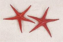 Seesterne rot, 2 St. - Kunststoff Seesterne zur maritimen Dekoration, Seestern Attrappe, Schaufensterdeko, Bühnen Requisite, Party Deko, Tischdekoration, Dekoartikel, Geschenkidee