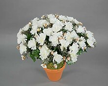 Seidenblumen Roß Chrysantheme 40cm weiß im Topf