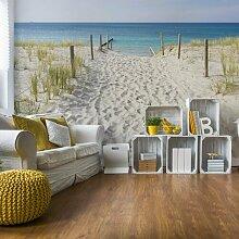Seidenmatte Fototapete Sandweg zum Strand 2,54 m x