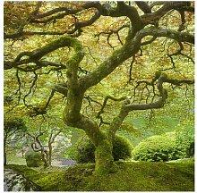 Seidenmatte Tapete Grüner japanischer Garten