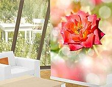 Selbstklebende Tapete No.YK19 Shining Rose Blumen