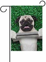 SENNSEE Hundeflagge mit Hantelhaus, 30,5 x 45,7