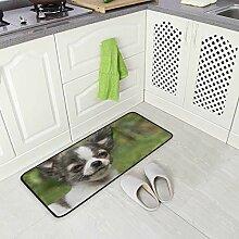 SENNSEE Küchenteppich für Chihuahua, für den