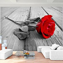 SENSATIONSPREIS - Fototapete Rose 308 x 220 cm - Vliestapete - Wandtapete - Vlies Phototapete - Wand - Wandbilder XXL - !!! 100% MADE IN GERMANY !!! Runa Tapete 9060010a