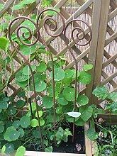 Set, 3 Stück, Gartenstab Schnecke, Rankstab, Rosenstab,Rost,100 cm, Eisen