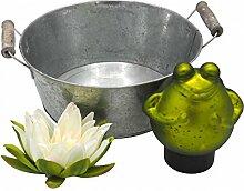 SET Frosch Schwimmend Seerose Deko Terrasse Balkon Garten Teich Gartendeko Sommer
