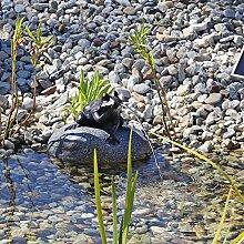 Set Frosch Wasserspeier NSP10 Teichfigur Solarbrunnen mit Solar Pumpe für Teich Gartenteich