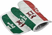 Set Ofenhandschuh und Topflappen, Mexiko-Flagge,